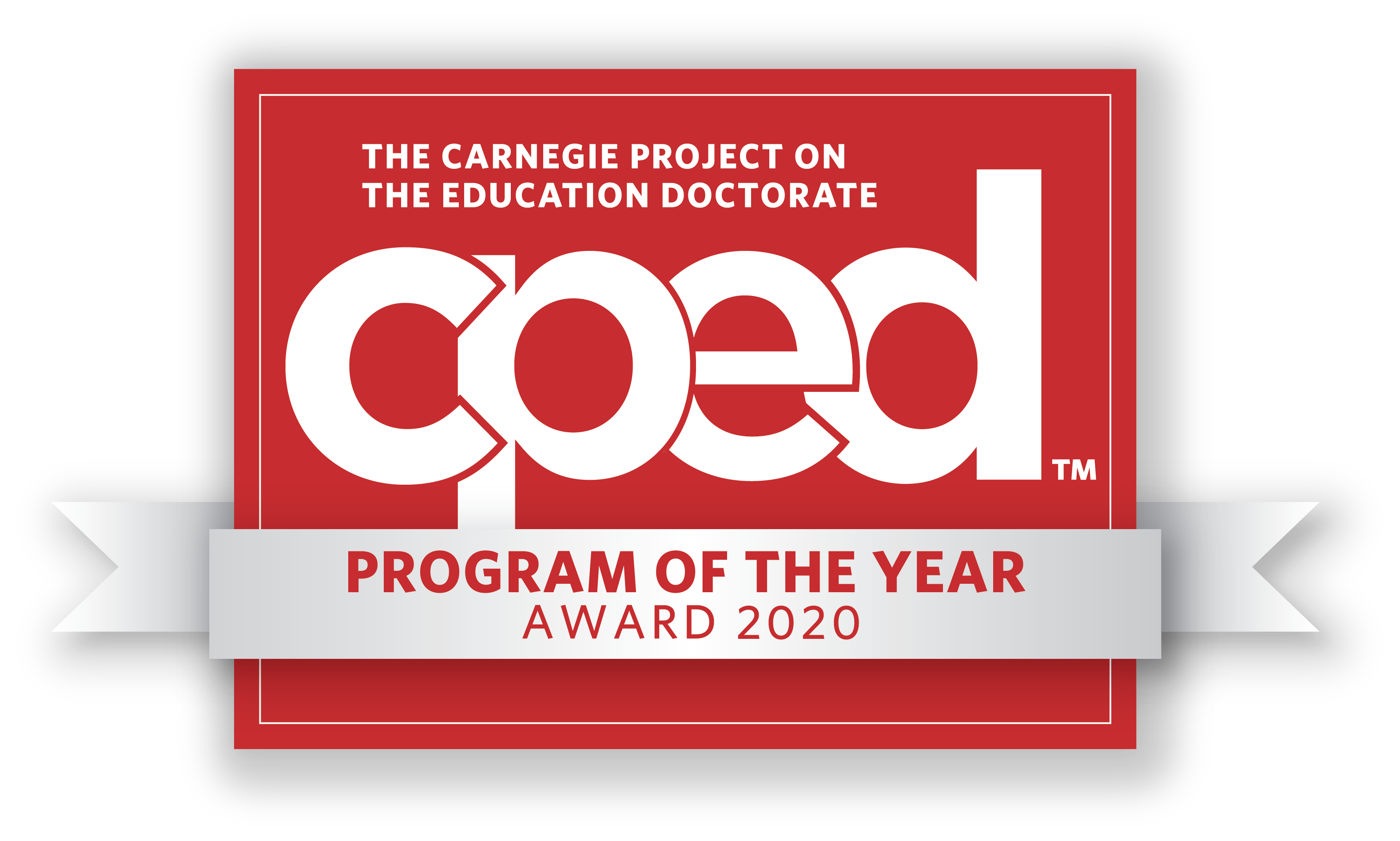 Program of the Year 2020 logo